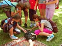 Letni_tabor_2012_1.turnus_50