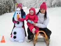 Zimni_tabor_pro_rodice_a_deti_2015_55