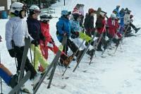 zimni_tabor_1-turnus2013_69