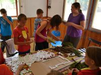 Letni_tabor_3 (44)